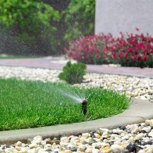 A Picture of a Sprinkler Watering Grass.