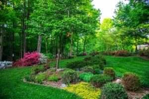 Flower Bed Installation & Maintenance in Granbury & Aledo