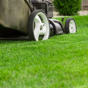 A Picture of a Lawn Mower On Grass.