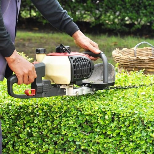 A picture of a Man Trimming Hedge with Trimmer.