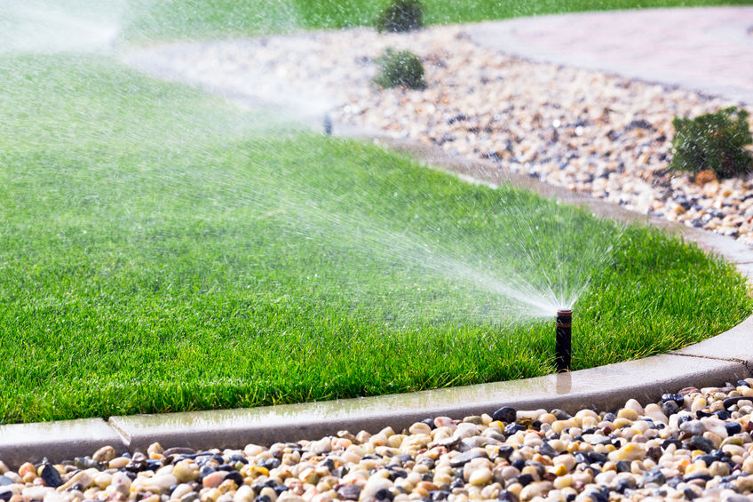 A Picture of Automatic Sprinklers Watering Grass.