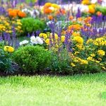 Flowerbed Installation and Maintenance