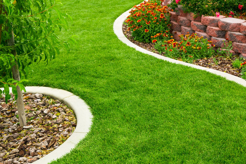 A Picture of Garden Landscaping.