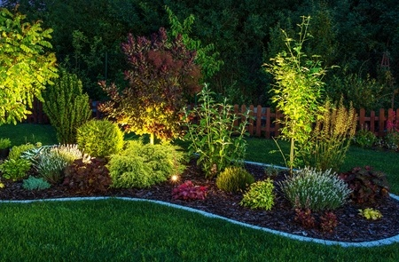 A Picture of Garden Lighting.