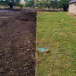 Grass and Sod Installation