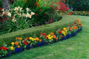 How Landscaping Can Benefit the Value and Look of Your Property