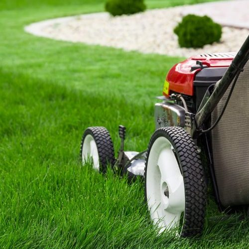 A Picture of a Lawn Mower Cutting Grass.
