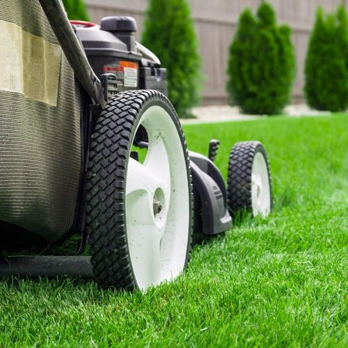 Residential Lawn Mowing In Dallas Fort Worth Tx