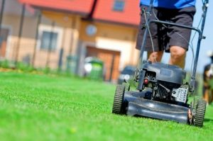 Mistakes with lawn care