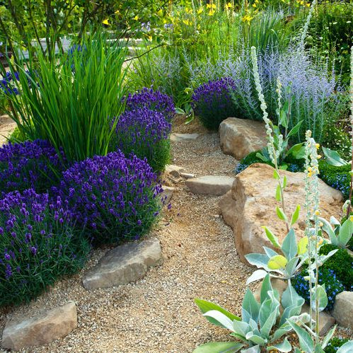 A Picture of a Tranquil Garden Landscape.